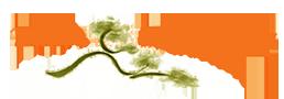 Pinon Community Acupuncture Logo